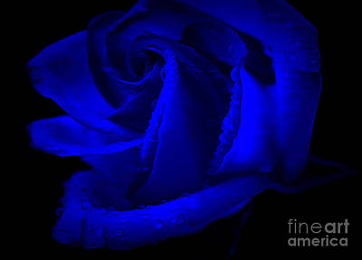 Magical Photograph - Forever Blue by Krissy Katsimbras