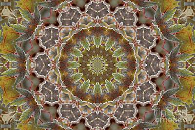 Frosted Maple Leaf Kaleidoscope Print by J McCombie