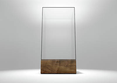 Glass Display Case Print by Allan Swart