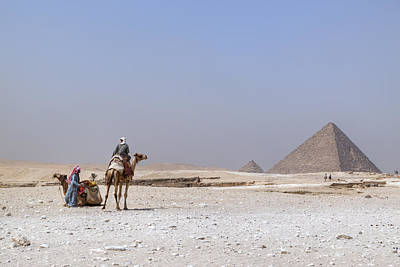 Camel Photograph - Great Pyramids Of Giza - Egypt by Joana Kruse