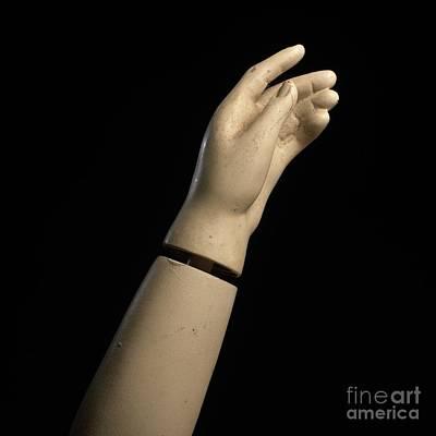 Single Object Photograph - Hand Of Dummy by Bernard Jaubert