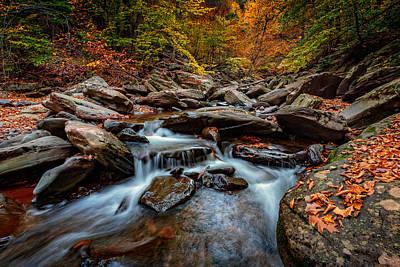 Fall Foliage Photograph - Kaaterskill Creek by Rick Berk