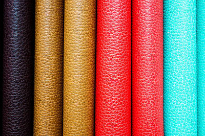 Classic Collection Photograph - Leather Background  by Tom Gowanlock