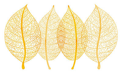 Translucent Painting - Leaves by Frank Tschakert