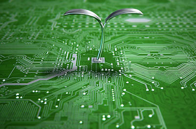Macro Circuit Board With Futuristic Plant Print by Allan Swart