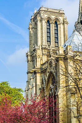 Paris Photograph - Notre Dame Bell Tower With Blooming Trees. by Nila Newsom