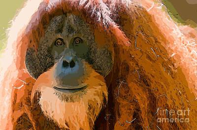 Orangutan Photograph - Orangutan by Andrew Michael