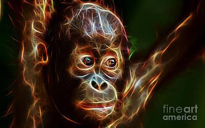 Orangutan Mixed Media - Orangutan Collection by Marvin Blaine