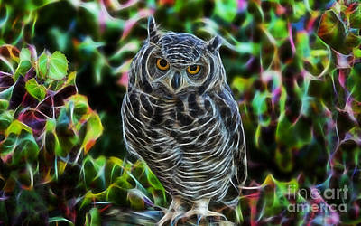 Baby Mixed Media - Owl Collection by Marvin Blaine