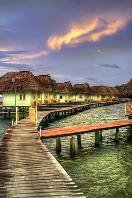 Toro Photograph - Punta Caracol by Dolly Sanchez