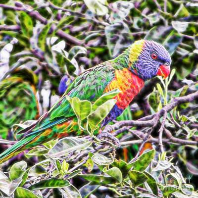 Parakeet Digital Art - Rainbow Lorikeet On Branch by Wendy Townrow