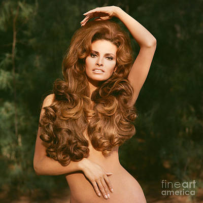 Personalities Photograph - Raquel Welch by Terry O'Neill