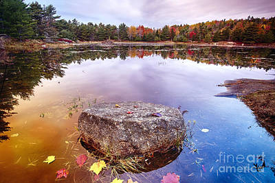 Rock In A Pond Print by George Oze