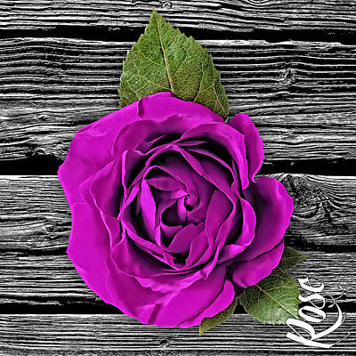 Rose Wood Collection Print by Marvin Blaine