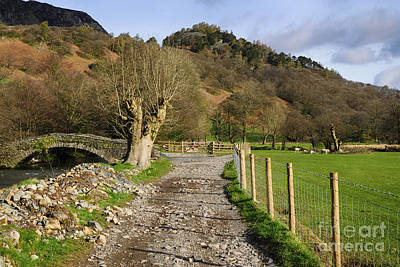 Lake District Photograph - Rosthwaite by Stephen Smith