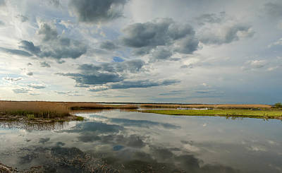 Salt Water Marsh Print by Rick Mosher