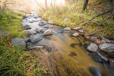Santa Ysabel Creek Print by Alexander Kunz