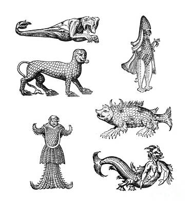 Sea Monsters Print by Science Source
