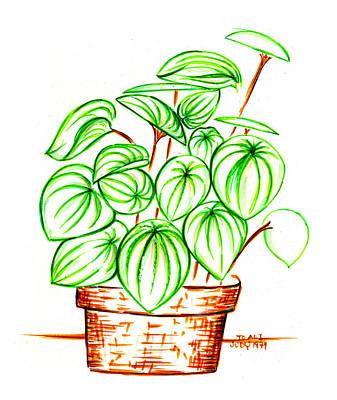 Friendly Drawing - Still Life by Judith Herbert