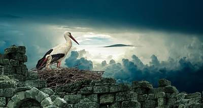 Stork Mixed Media - Stork by FL collection
