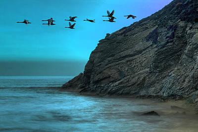 Tourism Digital Art - Swans by Jaroslaw Grudzinski