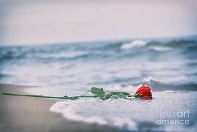 Autumn Photograph - Waves Washing Away A Red Rose From The Beach. Vintage. Love by Michal Bednarek