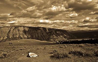 Yellowstone Sky Print by Patrick  Flynn