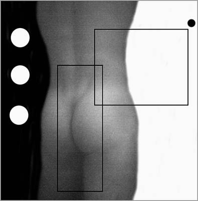 Nudes Photograph - 2004 - Honoring Mapplethorpe by Oscar Valladares