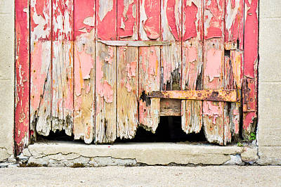 Scruffy Photograph - Old Door by Tom Gowanlock