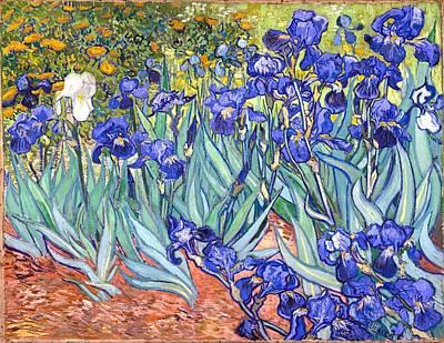 Print Of Irises Painting - Irises by Vincent Van Gogh
