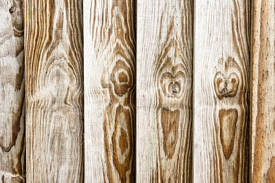 Pattern Photograph - Fence Panels by Tom Gowanlock