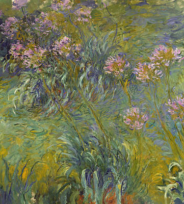Agapanthus Print by Claude Monet