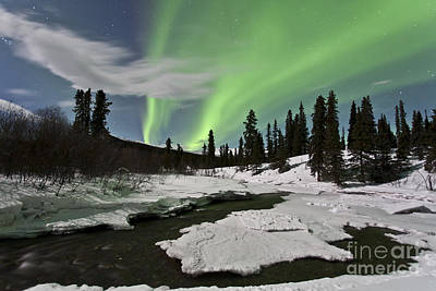 Aurora Borealis Over Creek, Yukon Print by Jonathan Tucker