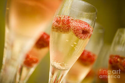 Champagne Print by Kati Molin