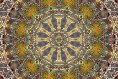 Mccombie Mixed Media - Frosted Maple Leaf Kaleidoscope by J McCombie
