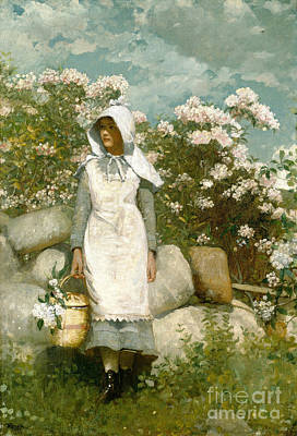 Girl And Laurel Print by Winslow Homer