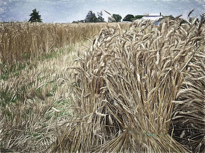 Feed Mill Photograph - Harvest Time by F Leblanc