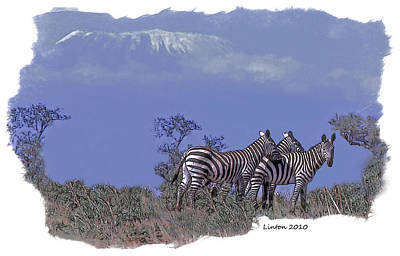 Zebra Digital Art - Kilimanjaro by Larry Linton