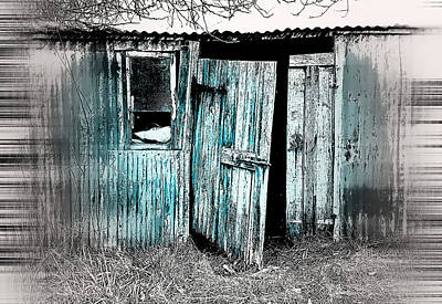 Hiding Photograph - Old Hut by Tom Gowanlock