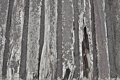 Messy Photograph - Old Wood by Tom Gowanlock