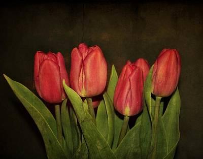 Purple Flowers Digital Art - Pink Tulips by Cathie Tyler