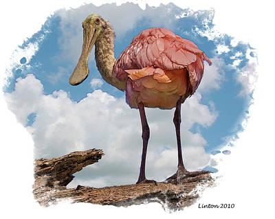 Spoonbill Digital Art - Roseate Spoonbill by Larry Linton