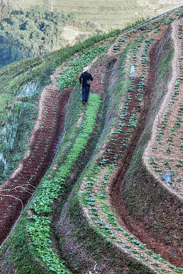 Vietnamese Photograph - Sapa - Vietnam by Joana Kruse