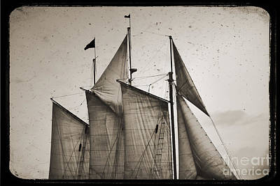 Pirate Ships Photograph - Schooner Pride Tall Ship Charleston Sc by Dustin K Ryan