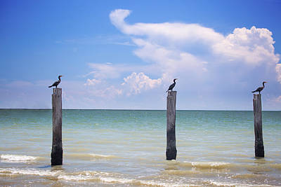 Wall Decor Photograph - 3 Sisters by J Darrell Hutto