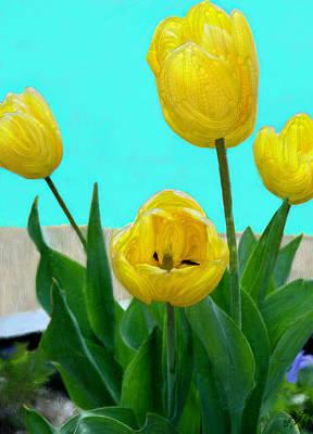 Tulip Digital Art - Tantalizing Tulips by Bruce Nutting