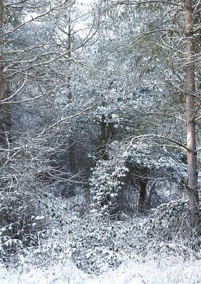 Fantasy Tree Mixed Media - Winter by Svetlana Sewell