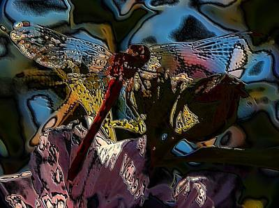Abstract Dragonfly Print by Belinda Cox