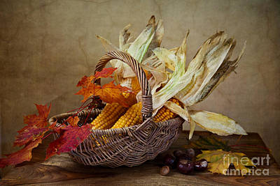 Harvest Photograph - Autumn by Nailia Schwarz