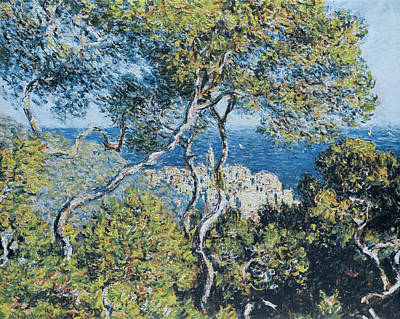 Forest Painting - Bordighera by Claude Monet